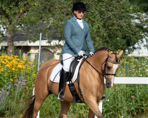 Eastern Wisconsin Chapter New Dressage
